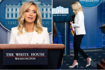 New Press Secretary Kayleigh McEnany